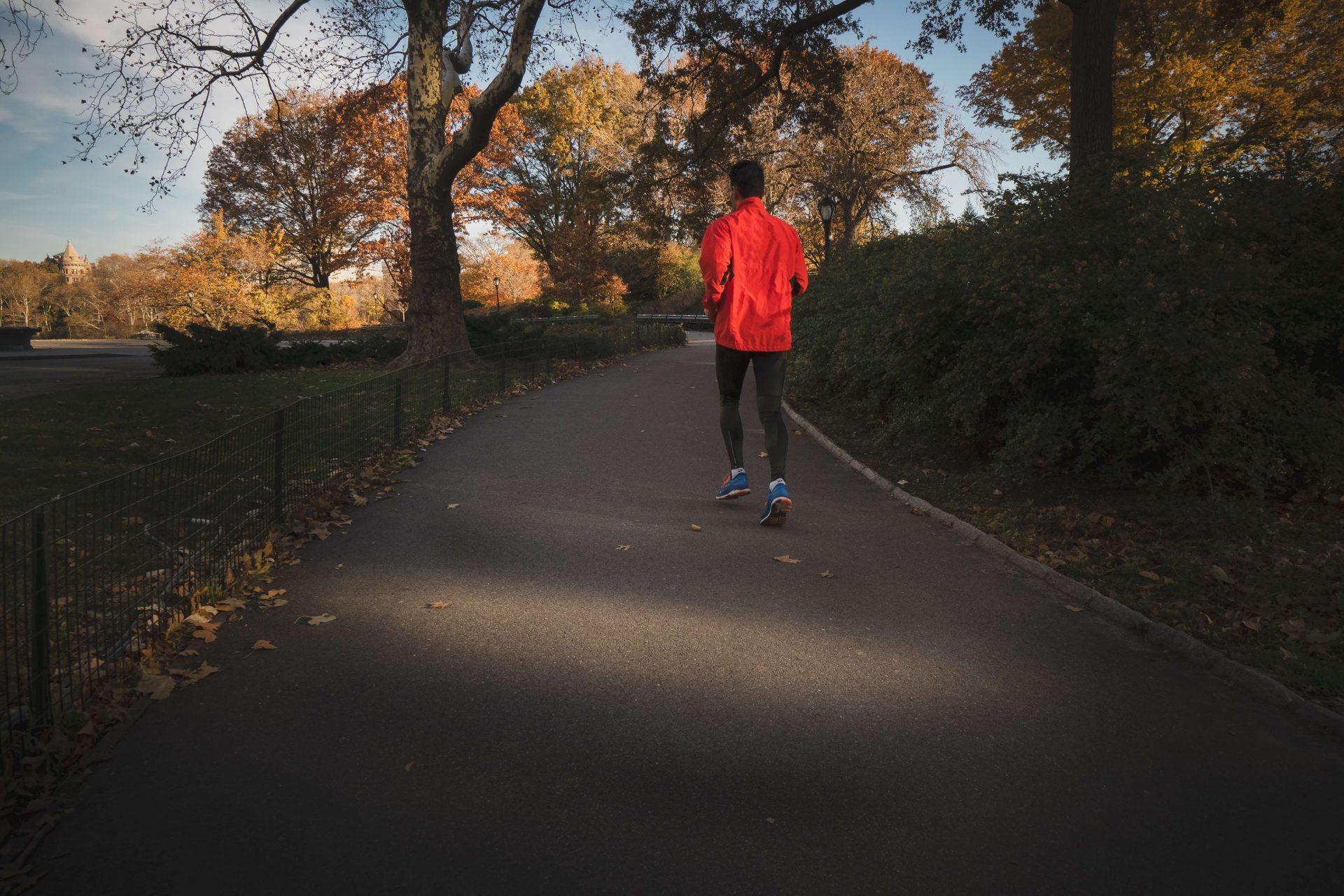 Körperliche und geistige Fitness