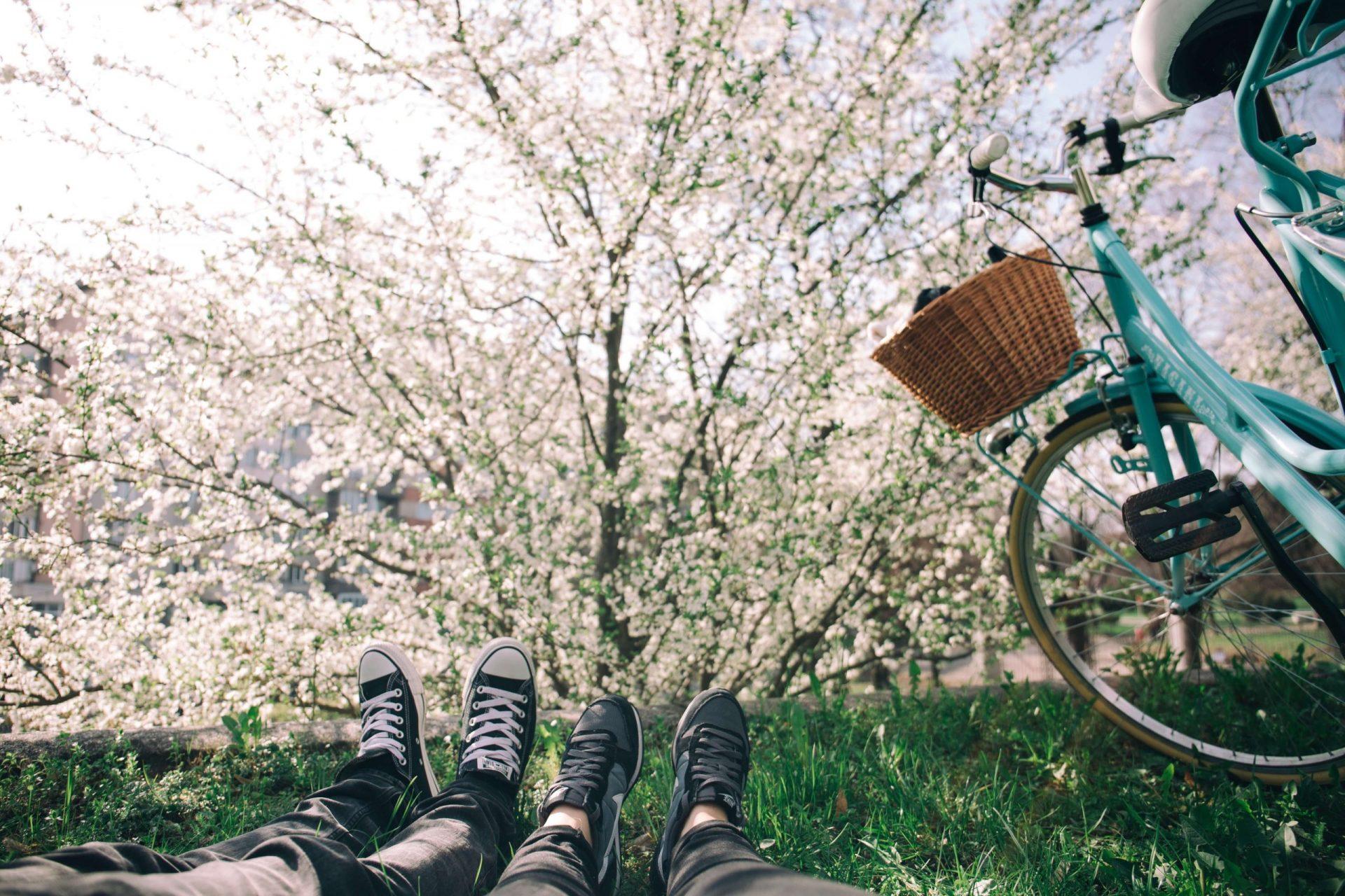 Gestärkt in den Frühling