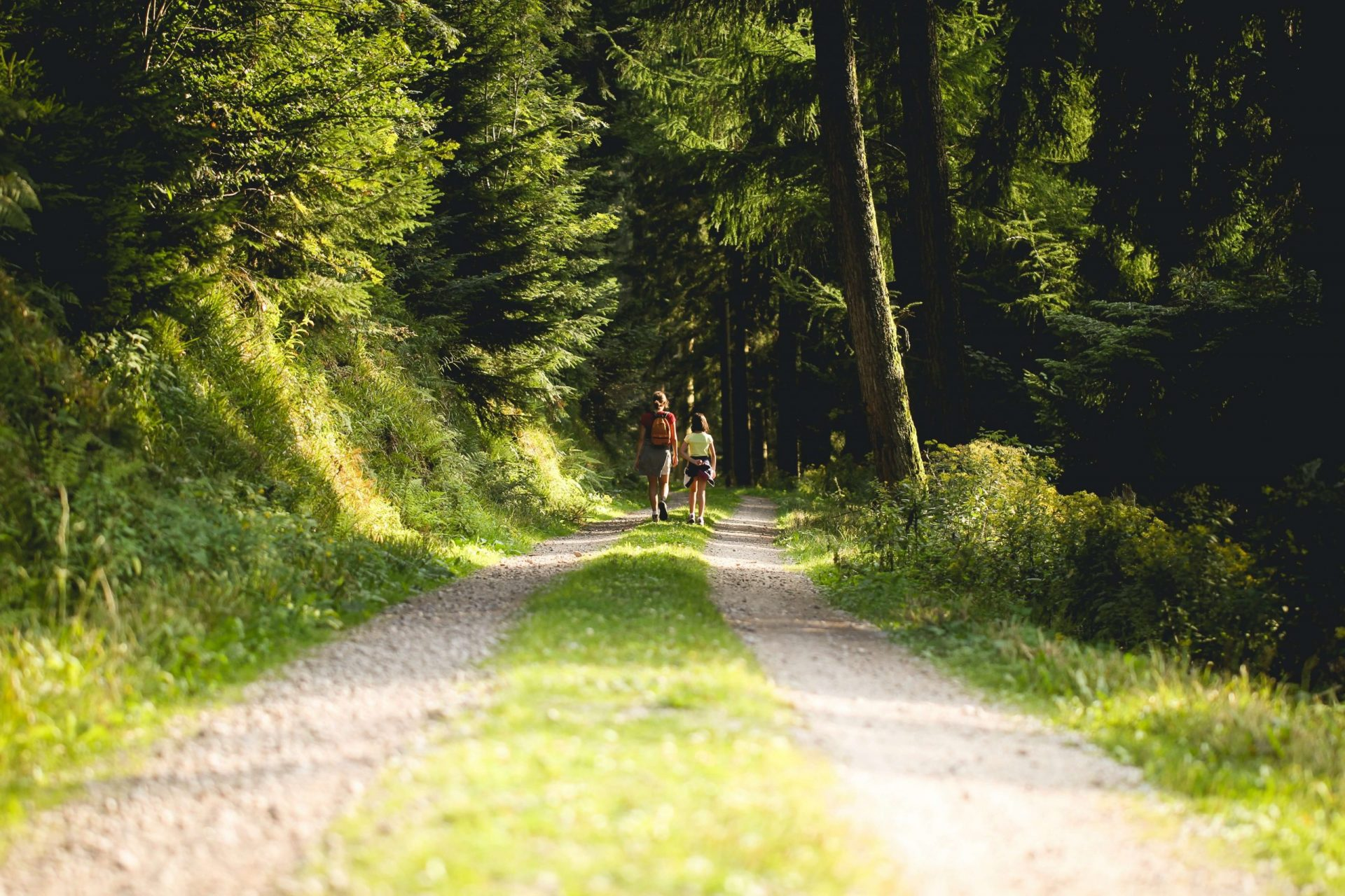 grüne Ausflugsziele in Österreich